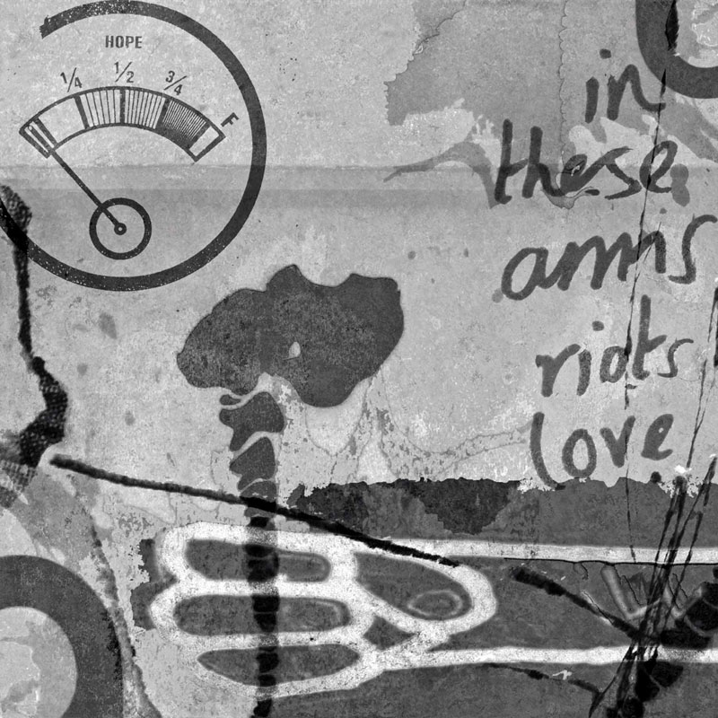 in these arms riots love